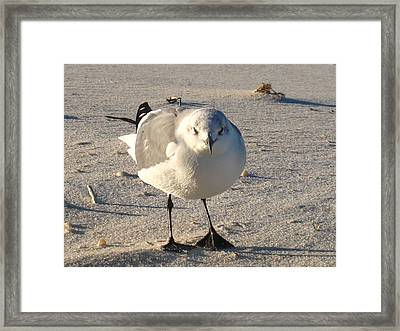 His Day Framed Print