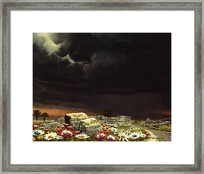 His Jewels Framed Print by Graham Braddock