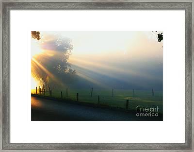 His Light II Framed Print by Douglas Stucky