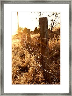 His Light Framed Print