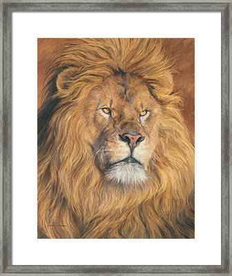 His Majesty - Detail Framed Print by Lucie Bilodeau