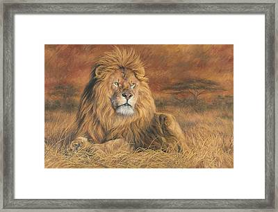 His Majesty Framed Print by Lucie Bilodeau