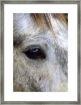 His Spirit Was Stolen Framed Print by John Glass