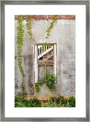 Historic Florida Building - Apalachicola Exchange Building Framed Print by Bill Swindaman