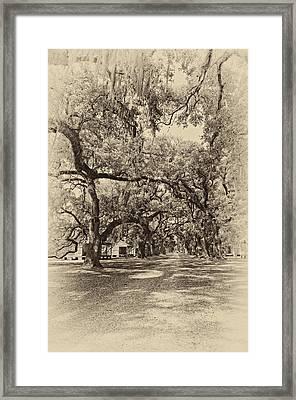 Historic Lane Antique Sepia Framed Print by Steve Harrington