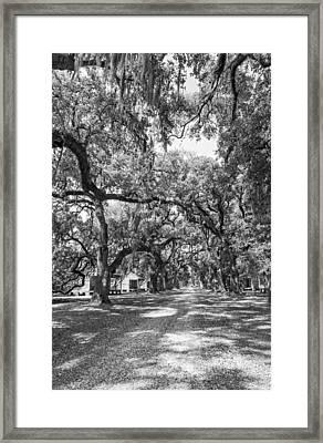 Historic Lane Bw Framed Print
