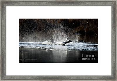 Hit The Road Goose Framed Print