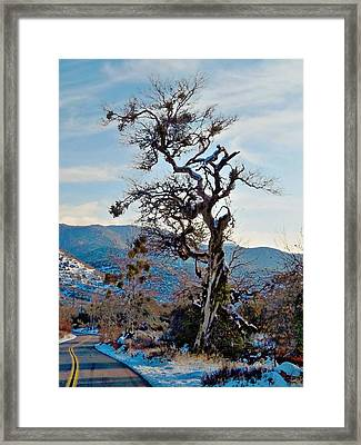 Hitchhiker On Highway 173 Framed Print by Glenn McCarthy Art and Photography