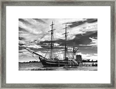 Hms Bounty Singer Island Framed Print by Debra and Dave Vanderlaan