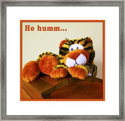 Ho Hummm Tiger Framed Print by Barbara Snyder