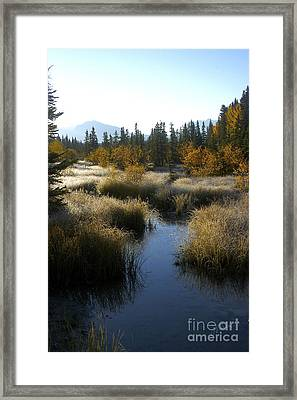 Hoar Frost And Stream Framed Print