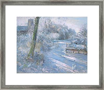 Hoar Frost Morning Framed Print by Timothy Easton