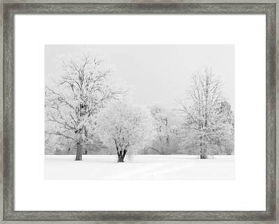 Hoar Frost Morning Framed Print by Rob Huntley