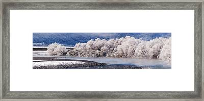 Hoar Frost On Trees By A River  Arthurs Framed Print by Nicola M Mora