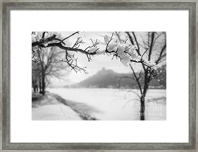 Framed Print featuring the photograph Hoarfrost With Sugarloaf by Kari Yearous