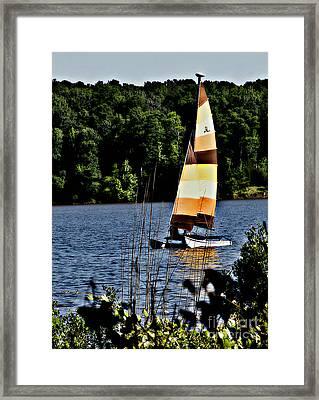 Hobbie Framed Print by Scott Allison