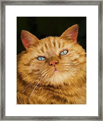 Hobbs Framed Print