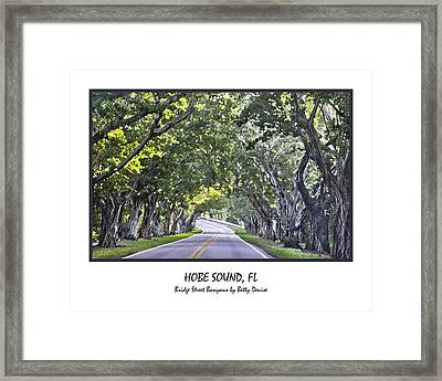 Hobe Sound Fl-bridge Street Banyans Framed Print