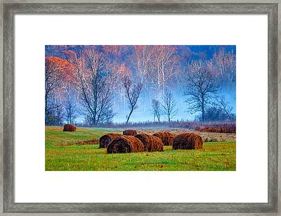 Hocking Hills 11 Framed Print by Brian Stevens