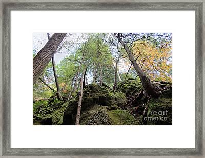 Hocking Hills Moss Covered Cliff Framed Print by Karen Adams