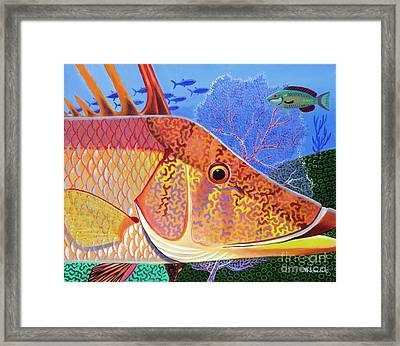 Hog Face Framed Print by Lina Tricocci