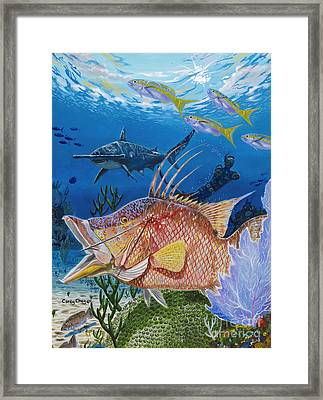 Hog Fish Spear Framed Print by Carey Chen