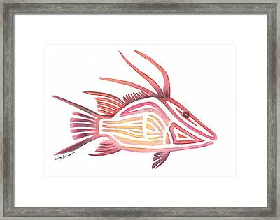 Hogfish Framed Print