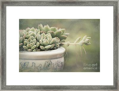 Hohoene I Ka Poli - Singing Softly To My Heart Framed Print