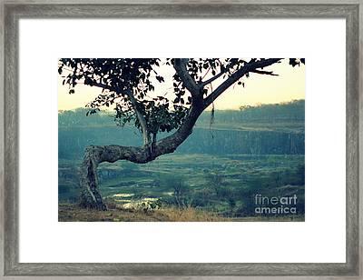 Hold It Together Framed Print by Vishakha Bhagat