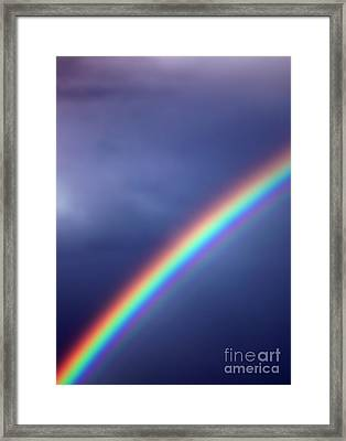 Hold On For Hope Framed Print by Amanda Barcon