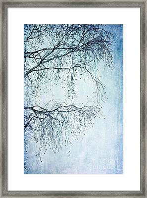 Hold On Till Spring Will Come Framed Print