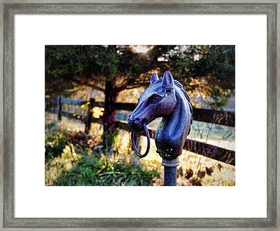 Hold Your Horses Framed Print by Cricket Hackmann