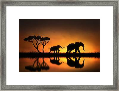 Holding On Framed Print by Jennifer Woodward