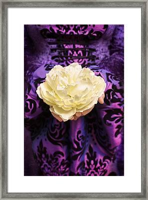 Holding Rose Framed Print by Amanda Elwell