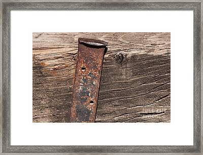Holding Up Framed Print by Dan Holm