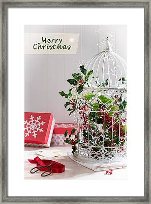 Holiday Birdcage Framed Print