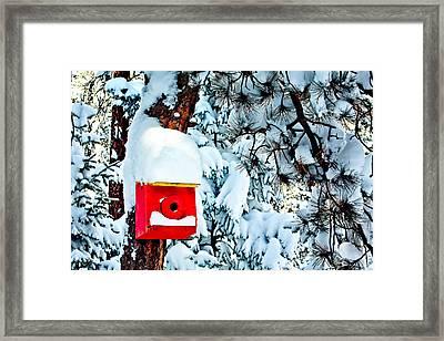 Holiday Birdhouse Framed Print by Teri Virbickis