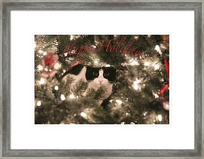 Holiday Card Framed Print by Shoal Hollingsworth