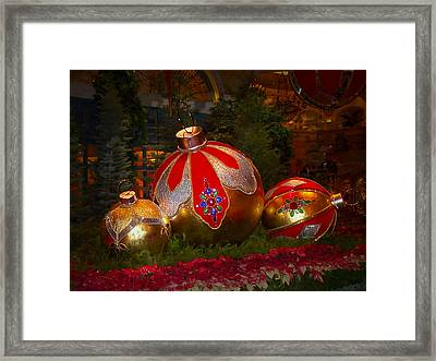 Holiday Decorations Framed Print by Lucinda Walter