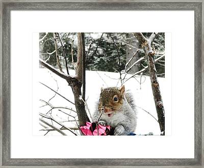 Holiday Joy Framed Print