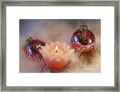 Holiday Moments Framed Print by Inspired Nature Photography Fine Art Photography