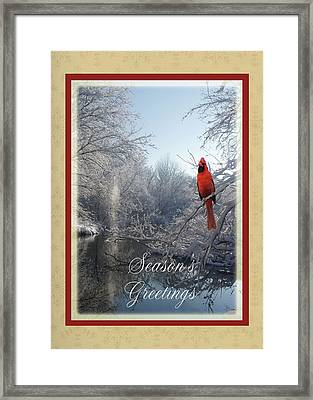 Holiday Season 2013 Framed Print