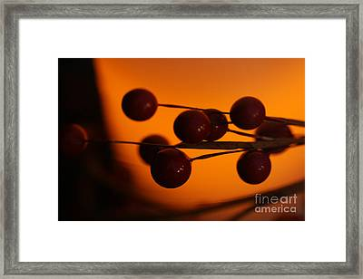 Framed Print featuring the photograph Holiday Warmth 1 by Linda Shafer