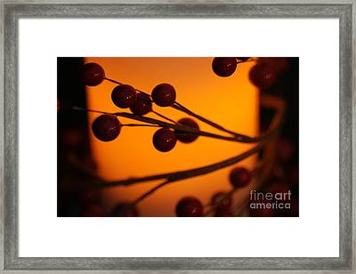 Framed Print featuring the photograph Holiday Warmth 2 by Linda Shafer
