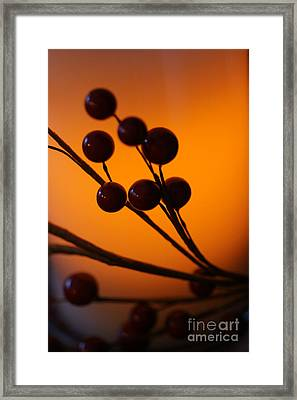 Framed Print featuring the photograph Holiday Warmth 3 by Linda Shafer