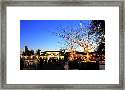 Framed Print featuring the photograph Holidays At The Nybg by Aurelio Zucco