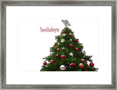 Holidays Framed Print by Audreen Gieger-Hawkins