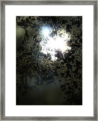 Holiness...... Framed Print by Tara Miller