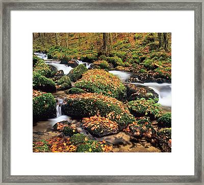 Hollbach Stream Near Gorwhil, Black Framed Print by Panoramic Images
