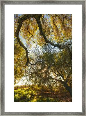 Hollenbeck Morning Framed Print by Joseph Smith